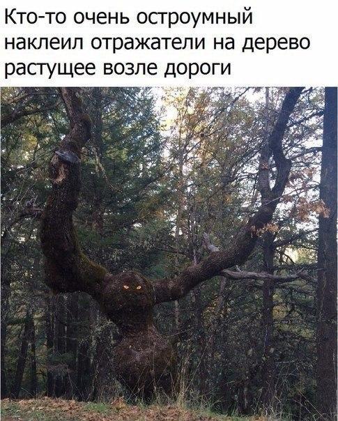 https://pp.vk.me/c7004/v7004176/33a4f/HHRA_Qiv3Dk.jpg