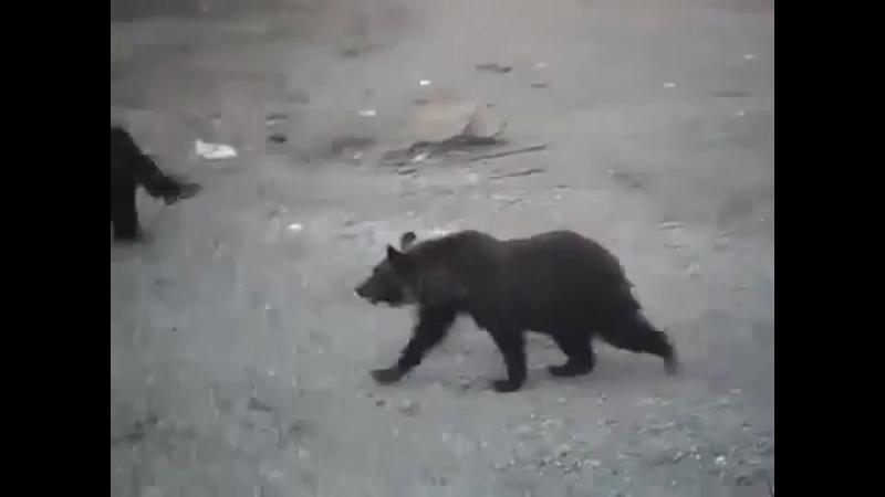 You don't scare me motherfuker
