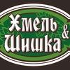 крафто-паб «Хмель и Шишка»