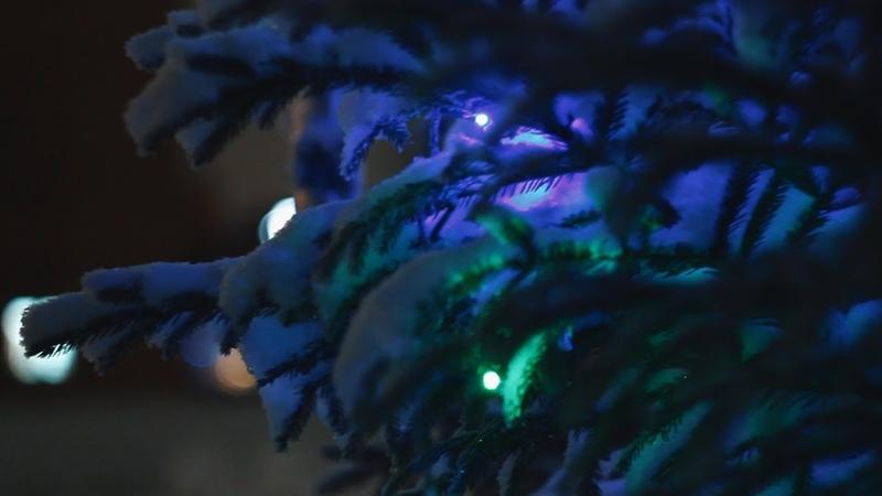 Christmas tale | Canon 600D | Helios 44M-2
