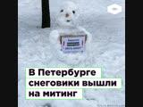 В Петербурге снеговики вышли на митинг против застройки парка ROMB
