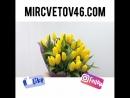 Букет из тюльпанов. Цветы Льгов