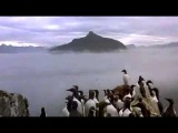 Le peuple migrateur (Winged Migration) - trailer