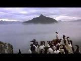 Le peuple migrateur (Winged Migration) - trailer