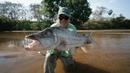 ГИДРОЦИН ТЕРАПОН или ТИГРОВАЯ РЫБА Рыбалка на спиннинг в Замбези Африке 2 серия