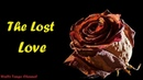 Golden Clips For Love Songs - The Lost Love Collection