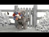 NoPostie from Carte Blanche Greetings Tatty Teddy Montage