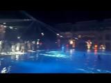 Дискотека у бассейна. Hydros
