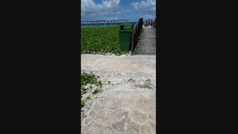 Куба кайо коко