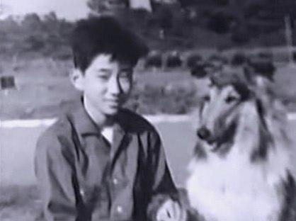 Рю Нарушима (Ryu Narushima)
