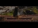 Джейкоб уходит из стаи - Сумерки. Сага. Рассвет_ Часть 1 (2011) - Момент из филь