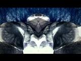 Art Of Trance - Praxia (Original Mix) Platipus Official Video