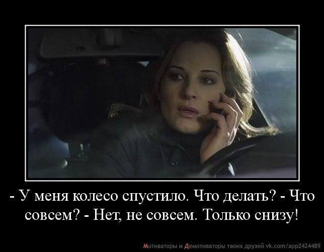 http://cs403621.vk.me/v403621539/ab3d/a73dvaepTy0.jpg