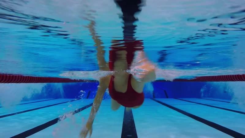 The Wrong Neighbor - swimming