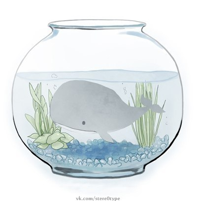 Кит в акваріумі