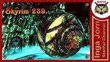 The Elder Scrolls V Skyrim + SkyRe #239