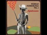 Various Ayahuasca Cumbias Psicodelicas Vol.1 70's Peru Psych Soul Rock Latin Folk Funk Music