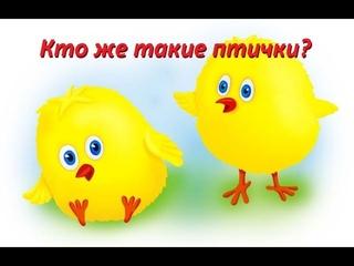 Кто же такие птички? в Revelation Online