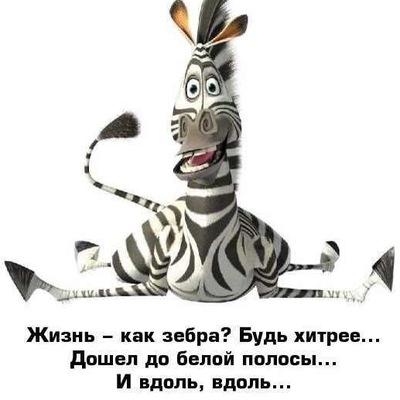 Ольга Матушкина, 10 сентября 1974, Тюмень, id150465602