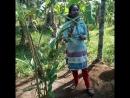Милая индийка на английском говорит о травах
