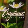 Спутник в Комарово - реабилитационный центр