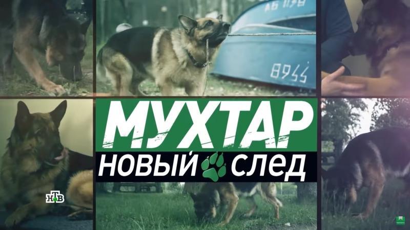 Мухтар Новый след 2 сезон 25 серия У нас во дворе