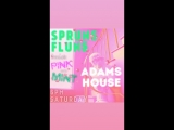 SPRUNG FLUNG PINK andor MINT party at Adam's house, 28.04.2018