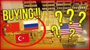 INCREDIBLE DYSFUNCTION Craig HEMKE The Chinese The Russians The Turkish Central Bank's Buying