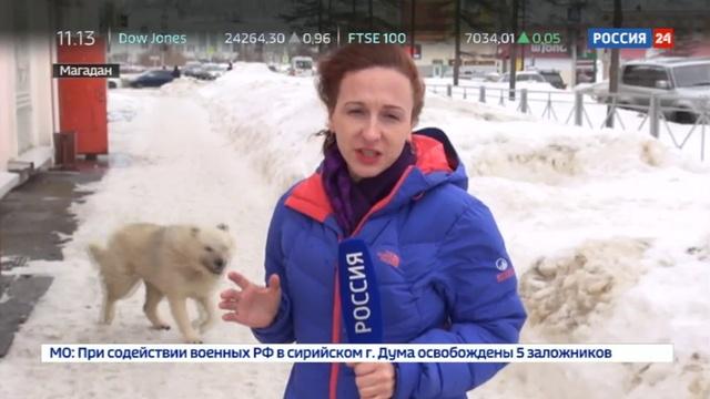 Новости на Россия 24 • Жители Магадана вторые сутки переживают мощный ураган