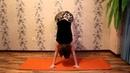 Упражнения, подготавливающие к балансам на руках. Плечевой пояс и спина.