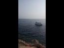 Красота Красного моря