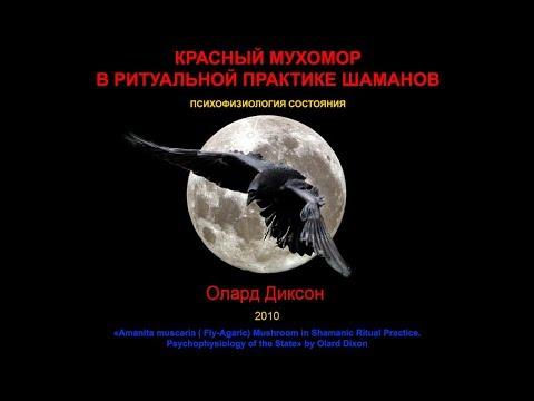 О. Диксон. Красный мухомор в ритуальной практике шаманов. 2010