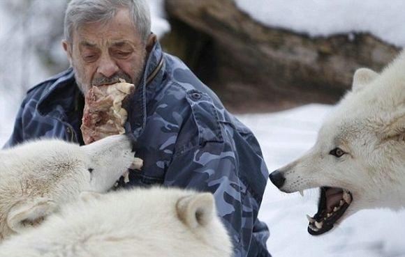 Десантник живет в стае волков VHxOOCjXYaw