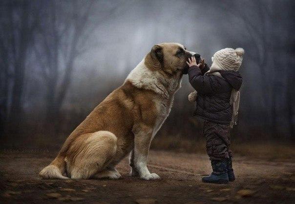 Фотограф Елена Шумилова — мама двух дружных шустрых мальчишек. Сыновья и их домашние животные стали героями серии душевных фотографий о жизни в деревне.