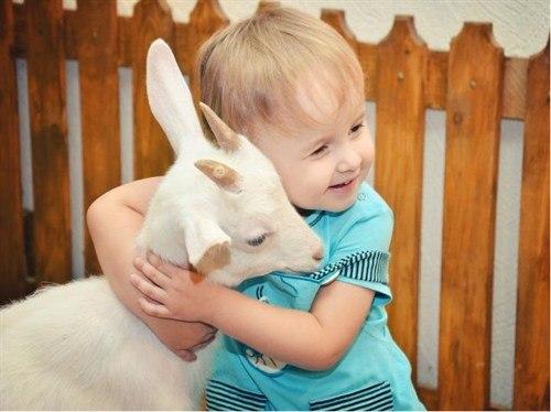 В Новосибирске открыли контактный зоопарк