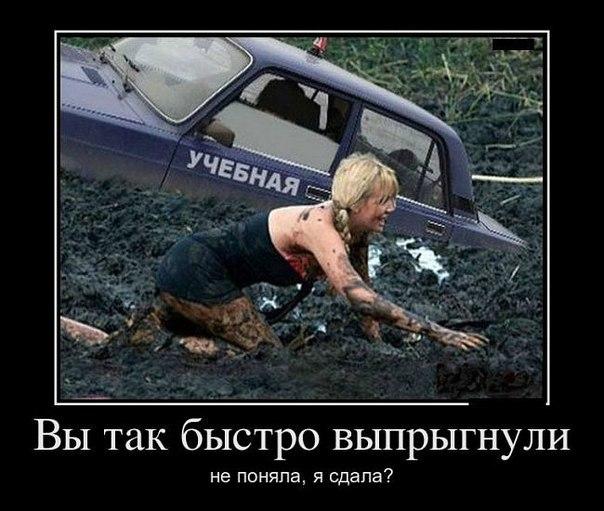 http://cs419627.vk.me/v419627916/4f39/bPMWK-iwg2A.jpg