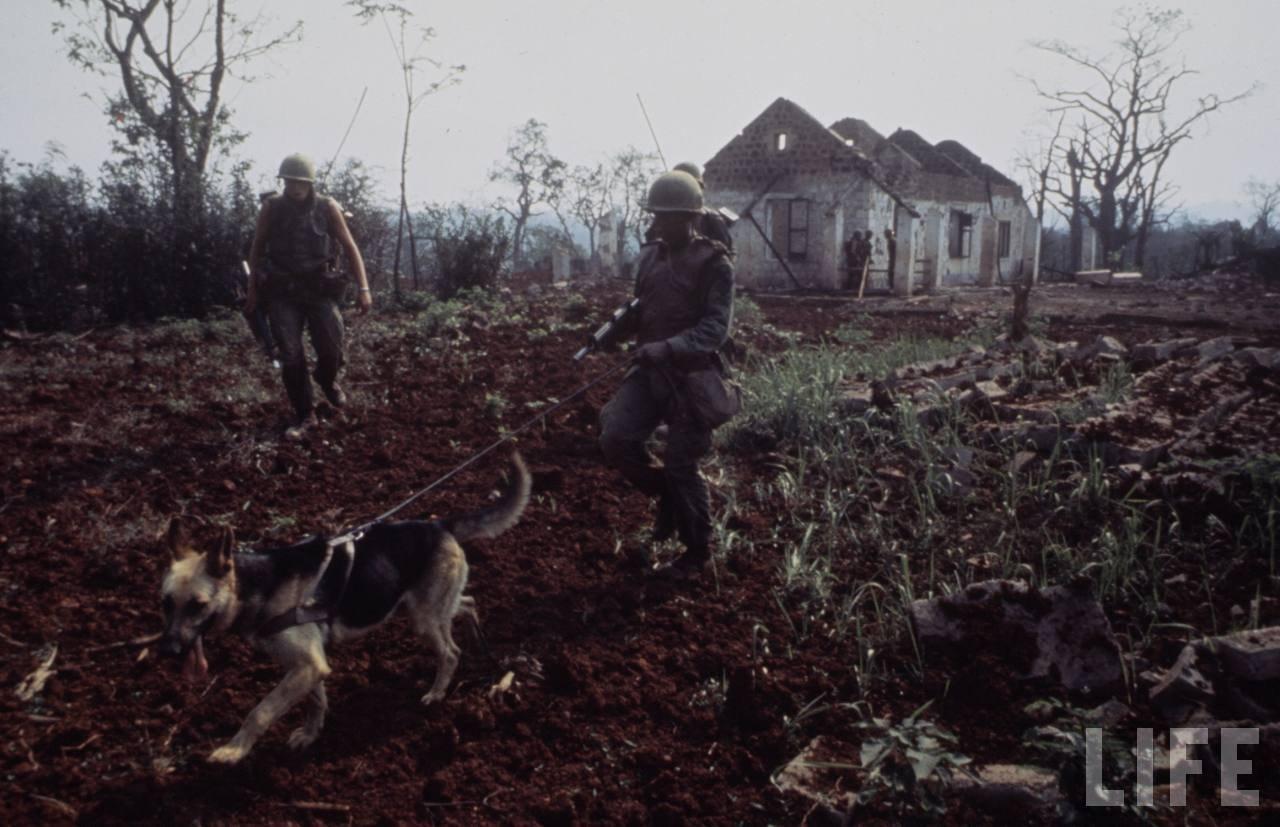 guerre du vietnam - Page 2 Ogg5yZKHjFA