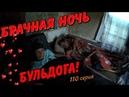 Один день среди бомжей 110 серия Брачная ночь Бульдога 18