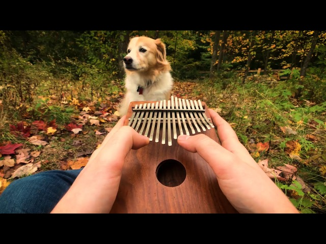 Cant Help Falling In Love on a Kalimba