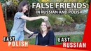 7 false friends in Polish and Russian | Super Easy Russian 17 / Super Easy Polish 14