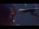 Кино - Виктор Цой - Концерт в Олимпийском