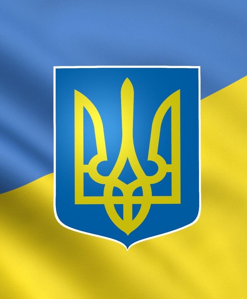 золотий пензлик, благодійна Україна
