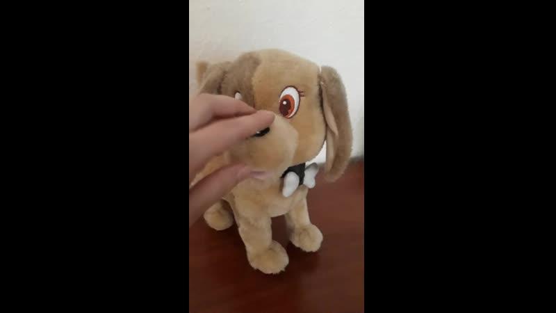 Собака с функцией сторожевой пес)) если его трогать гавкает. 50грн