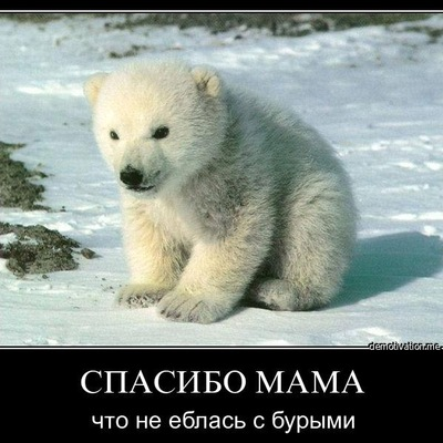 Тимофей Тимонин, 15 октября , Казань, id168479018