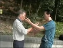 正宗葉問詠春傳人 宗師葉正與郭思牧黐手片段 Top Level Wing Chun Chi Sao - Ip Ching and Samuel Kwok