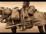 Выставка костюмов и артефактов фильма «Трудно быть Богом» в музее Эрарта