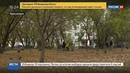 Новости на Россия 24 • В Красноярске школьник зарезал бывшего одноклассника