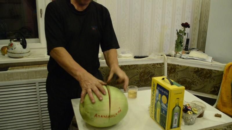 сорт Атаманский 5 кг,отрезал плеть по ошибке,ароматный,сладкий.