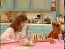 Альф шах и мат