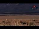 EE NW Великие Равнины Вилорогов миграции Северная Америка